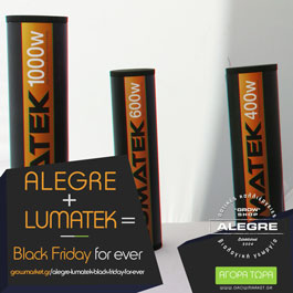 Alegre+Lumatek=Black Friday for ever