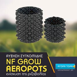 NF Grow Air Pots