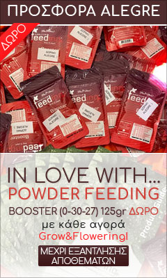 In love with... Powder Feeding!