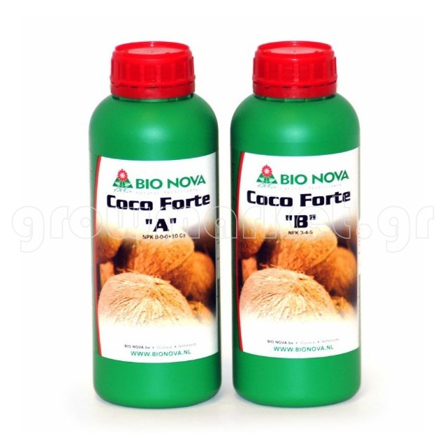 Coco Forte A & B 1lt