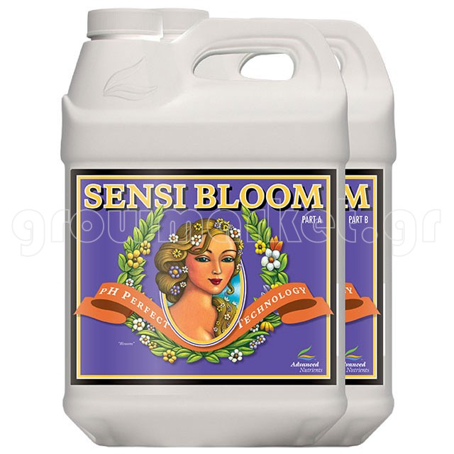 PH Perfect Sensi  Bloom Part B 10lt