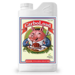 CarboLoad Liquid 1lt