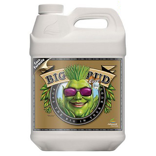 Big Bud Coco Liquid 1lt
