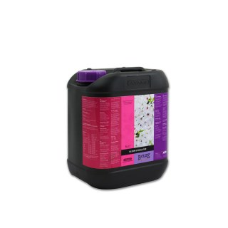 B'cuzz Bloom Stimulator 5lt
