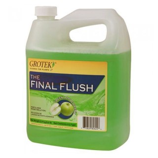 Final Flush Apple 1lt
