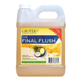 Final Flush Pineapple