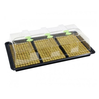 Large Unheated Propagator