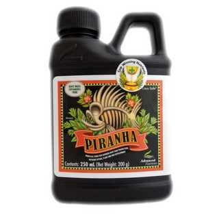 Piranha Liquid 250ml