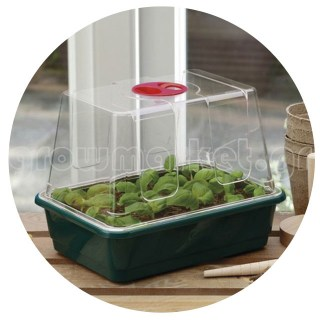 Small High Dome Propagator